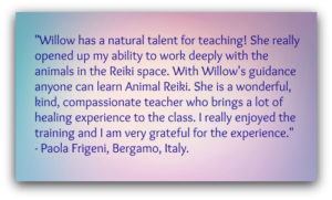 Rosewillow Reiki, Animal Reiki, Animal Reiki training, animal reiki class, animal reiki certification, reiki