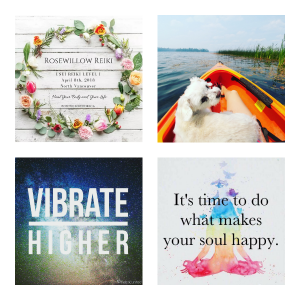 @rosewillowreiki Instagram